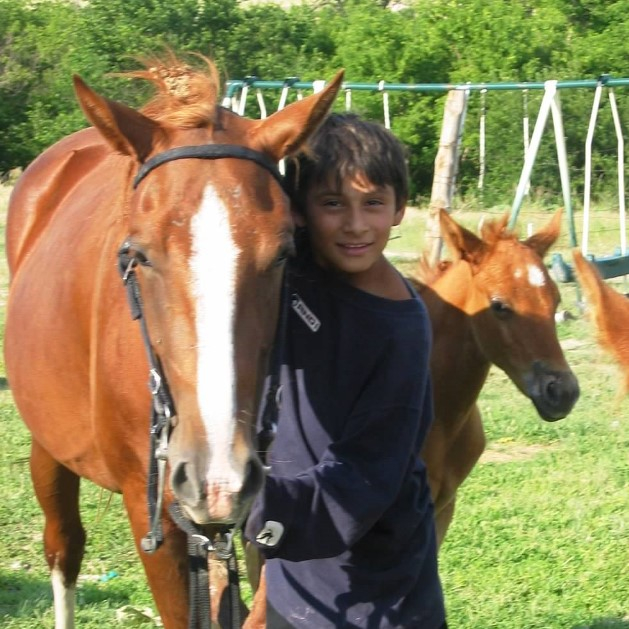 Boy and horses